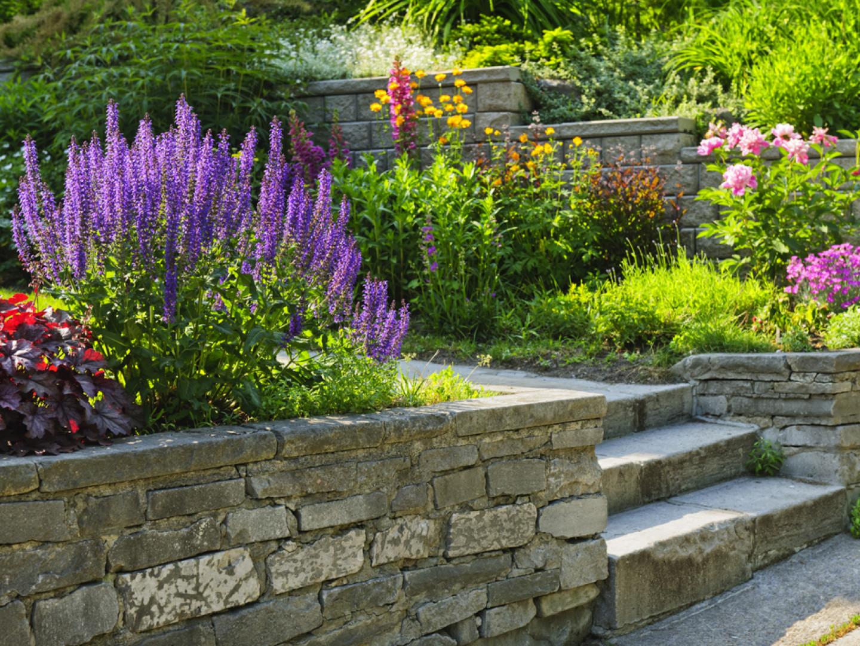 Landscape Design San Marcos Carlsbad Ca Stonebrook Landscapes